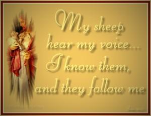 my-sheep-hear-my-voice